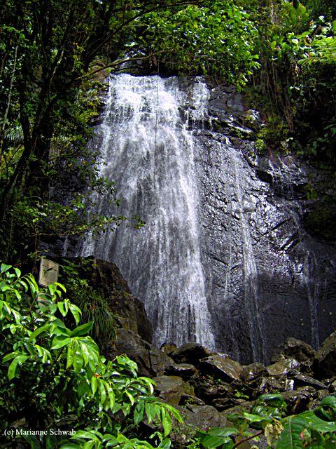 Puerto Rico La Coca Falls