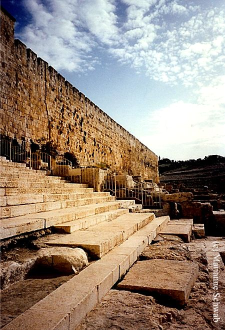 The Temple Steps In Jerusalem