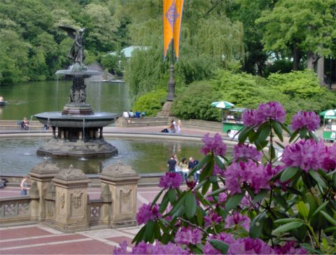 new york city attractions snapshots of five must see nyc On central park must see places